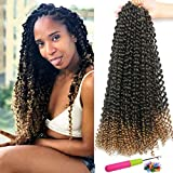 8Pcs Ombre Passion Twist Crochet Hair 18 Inch Long Bohemian Braids for Passion Twist Crochet Braiding Hair Hot Water Setting Synthetic Fiber Faux Locs Hair Extension(16Strands/Pack,1B/27#)