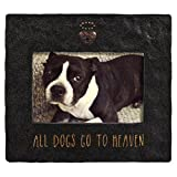 Grasslands Road, 'All Dogs Go To Heaven' Frame