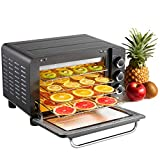 Food Dehydrator Machine, LoyoLa Electric Food Dryer with Time Setting and Temperature Adjustable from 95 to 173° F for Drying Beef Jerky, Fruit, Vegetables, Herbs and Meat - Dark Grey