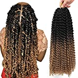 Passion Twist Hair 18inch Long Ombre Bohemian Curly 7 Packs Water Wave For Crochet Braiding Hair Extensions (18inch, T1B27)