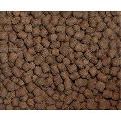 Wysong-Ferret-Epigen-90-Digestive-Support-Dry-Ferret-Food