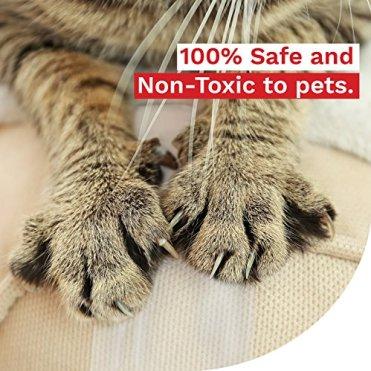 XFasten-Anti-Scratch-Cat-Training-Tape-Clear-25-Inches-x-15-Yards