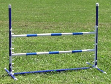 Affordable-Agility-Blue-Competition-Adjustable-Jump