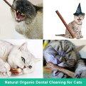 abobo-Catnip-Toys-Balls-Bells-Silver-Vine-Catnip-SticksMatatabi-100-Natural-Organic-Cat-ToysDental-Cleaning-for-Cats