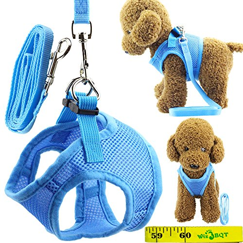 Soft Adjustable Mesh Dog Puppy Cat Pet Vest Harness and Leash Set for Dogs Cats Pets 1
