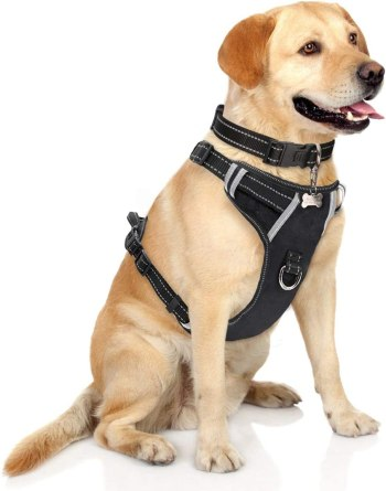 615hCKF5rhL. AC SL1200 Best Harness For Husky – A Throughout Buying Guide With Recommendations