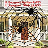 Halloween Spider 11.8Ft Large Plush Spider Web with 2 Large Spider 35.4' Halloween Decor Haunted House Spooky Toys for Halloween Decorations