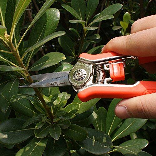 Flora Guard 6 5 Inch Micro Tip Pruning Snip Gardening Hand