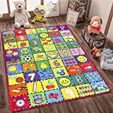 How Many Are There? teytoy Baby Rug for Crawling, Educational Kids Area Rugs Play Mat for Toddlers Room Decor, Count Game, Learn Animals, Expressions Carpet Outdoor Indoor 3.4' x 5'
