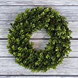 Pure Garden Boxwood Wreath, Artificial Wreath for the Front Door by, Home Décor, UV Resistant - 12 Inches