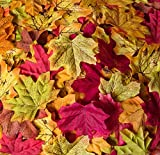 Bassion 1000 Pcs Assorted Mixed Fall Colored Artificial Maple Leaves for Fall Thanksgiving Decoration, Weddings, Events and Decorating