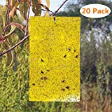 BestTrap 20-Pack Dual-Sided Yellow Sticky Traps Flying Plant Insect Such as Fungus Gnats, Whiteflies, Aphids, Leafminers - (6x8 Inches, Included 20pcs Twist Ties)