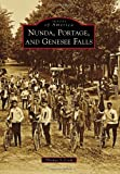 Nunda, Portage, and Genesee Falls (Images of America)