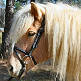 Product review for Exselle Icelandic Horse Bridle