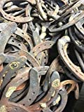 Product review for 100PCS AUTHENTIC CERTIFIED HORSESHOE USED RUSTIC PREWORN CRAFT HORSE SHOE GOOD LUCK