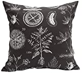 TangDepot 100% Cotton Nature Theme Throw Pillow Covers, Cushion Covers, Pillows Shells, 10 Sizes Option - (14'x14', N06 Gray Natural)