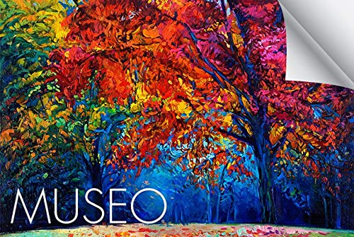 Museo-Textured-Rag-100-Cotton-Fine-Art-Paper-for-Inkjet-Printers-44-X-52-Roll