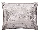 Calvin Klein Home Quartz Comforter Set, Queen, Fog, 3 Piece