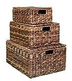 BIRDROCK HOME Abaca Nesting Baskets | 3 baskets | Environmentally Friendly