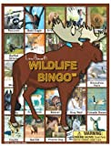 Lucy Hammett Games Wildlife Bingo Board Game