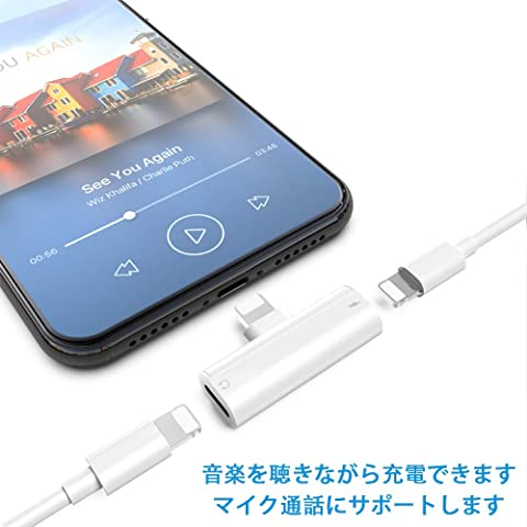 TOMPOL iPhone変換アダプタ TO-13-10232544 接続例
