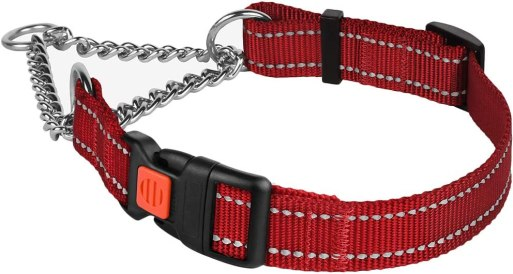 61Q4OUhemUL. AC SL1000 Best Dog Collar For Pulling That Keep Your Walks Struggle-Free