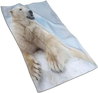 Ccsoixu Kitchen Dish Towels Wash Cloth Car Household Pet