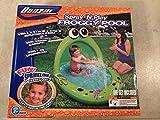 Spray 'N Play Froggy Pool by Banzai
