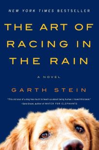Amazon.com: The Art of Racing in the Rain: A Novel (9780061537967 ...