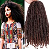 Pack of 3 Ombre Marley Braids Hair Kanekalon Synthetic Twist Crochet Braiding Hair Afro Kinky Hair Havana Braids 18 Inch (1B-30#)