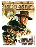 Any Gun Can Play: The Essential Guide to Euro-Westerns
