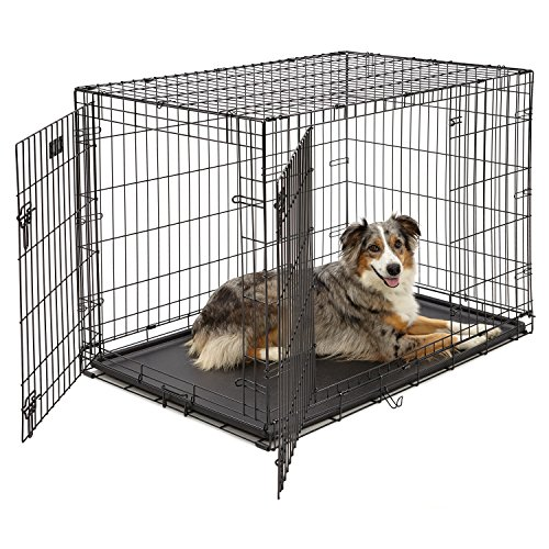 Large Dog Crate | MidWest iCrate Double Door Folding Metal Dog Crate | Divider Panel, Floor Protecting Feet, Leak-Proof Dog Tray | 42L x 28W x 30H Inches, Large Dog, Black