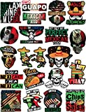 20 Mexican Stickers - Calcomanías Mexicanas – 100% Vinyl Stickers for Adults - Funny Decals for Hardhat, Construction, Laptop, Water bottle or Lunchbox. Pegatinas cascos. Calcomanias para autos