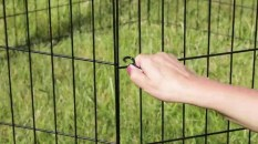 MidWest-Homes-for-Pets-Exercise-Pen-for-Pets-with-Full-Max-Lock-Door