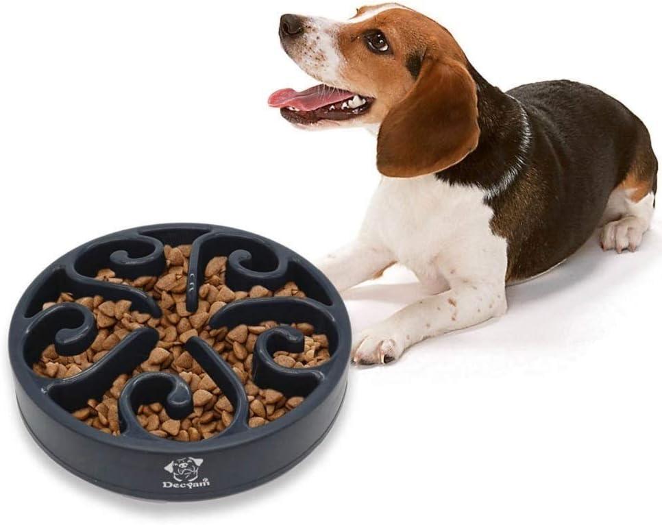 Comedero Perro Gato, Antideslizante Alimentacion Plato