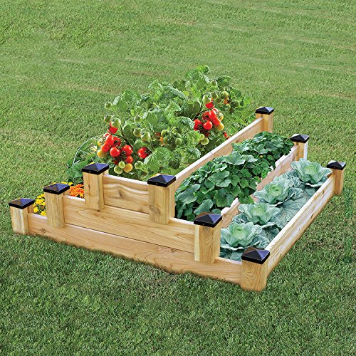 3 Tier Strawberry Planter: Growing Strawberries In Raised Beds For A Bountiful