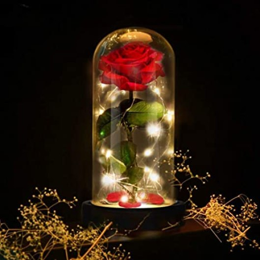 E-Manis Beauty and the Beast Rose Gift Kit Glass Dome Artificial Rose Lamp  Wooden Base LED Light Rose Home Decoration for Gift Valentine's Day  Mother's Day Christmas Birthday: Amazon.de: Küche & Haushalt