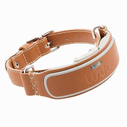 Smart Collars - Best Collar for Huskies