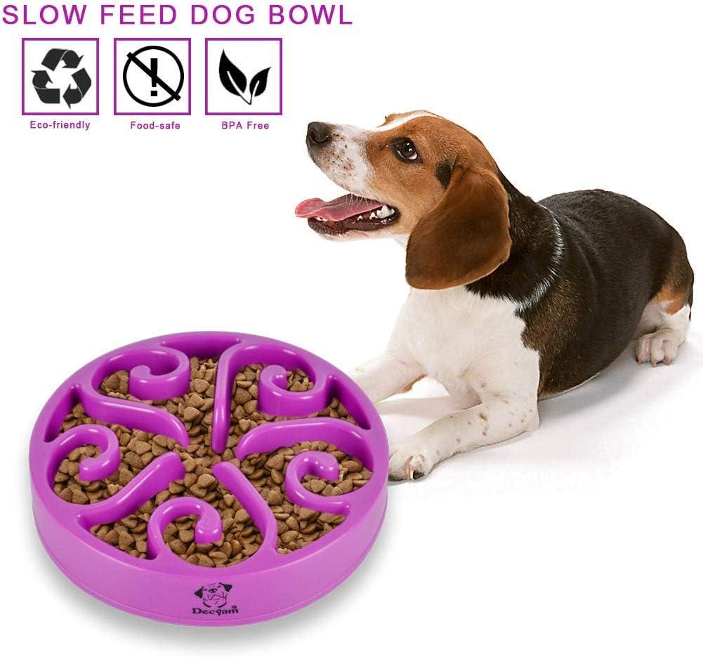 Comedero Perro Gato, Antideslizante Alimentacion