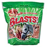 Product review for Manna Pro 0593547338 Apple Flavor Blast Treats for Horses, 3-Pound