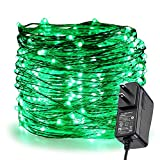ER CHEN Fairy Lights Plug in, 99Ft/30M 300 LED Silver Coated Copper Wire Starry String Lights Outdoor/Indoor Decorative Lights for Bedroom, Patio, Garden, Party, Christmas Tree (Green)