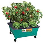 Emsco Group 2360 Little Pickers Raised Bed Children's Improved Aeration - Mobile Unit with Casters - Teaches Kids Self Watering Grow Box, Teal