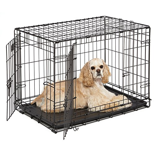 Dog Crate | MidWest iCrate 30' Double Door Folding Metal Dog Crate w/Divider Panel, Floor Protecting Feet & Leak-Proof Dog Tray | 30L x 19W x 21H Inches, Medium Dog Breed, Black