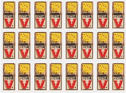 Victor EZ set mouse trap (Pack of 24)