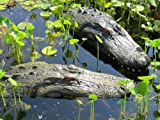 22' & 28' Alligator Head Decoy Kit with Reflective Eyes For Canada Geese & Blue Heron Control