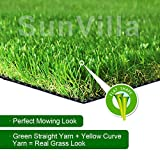 SunVilla Realistic Indoor/Outdoor Artificial Grass