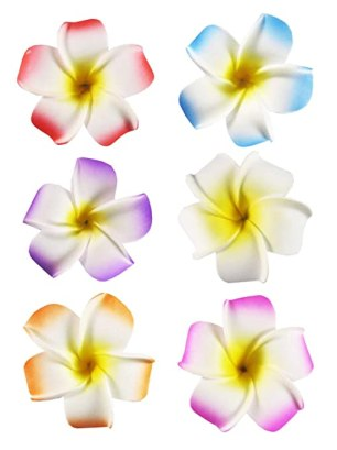 "HipGirl 6pc Set 2.5"" Hawaii Hawaiian Plumeria Flower Foam Hair Clip Accessory, Boutique Alligator Clip Assortment. For Bridal Wedding Party Beach Vacation Outfit, Dress. For Girls Teens Kids Adults."
