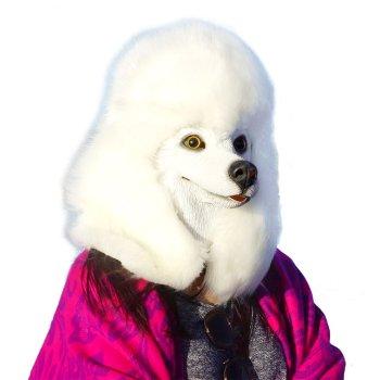 Costume Party Latex Super Bowl Underdog Dog Head Mask Poodle