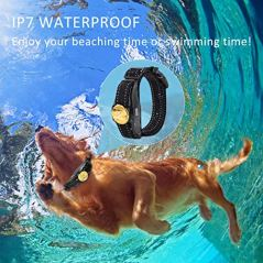 Peteme-Dog-Training-Shock-Collar-Rechargeable-with-BeepVibraElectric-Shock-100-Waterproof-Training-Collar-Up-to-1200Ft-Remote-Shock-Electric-Collar-for-Small-Medium-Large-DogsUpgraded-Version