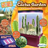 DuneCraft Cactus Garden Science Kit